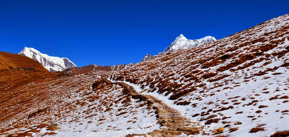Roopkund Trek_Rustik Travel_06_950-450
